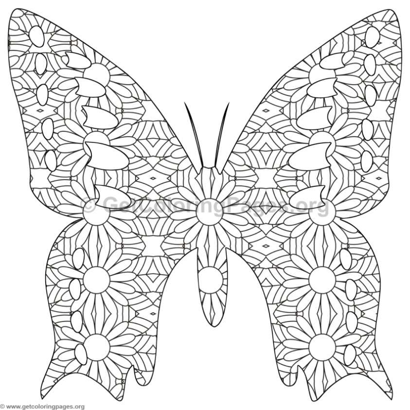 Butterfly Coloring Pages 10