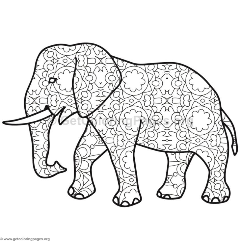 Elephant Coloring Pages 1 GetColoringPages