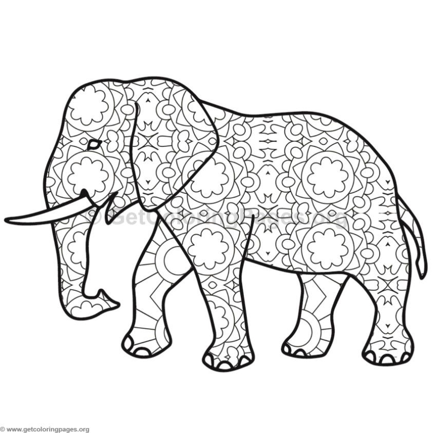 Indian Elephant Coloring Pages Sketch Coloring Page