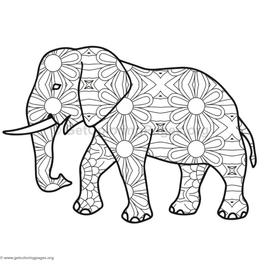 Elephant Coloring Pages 4 GetColoringPages