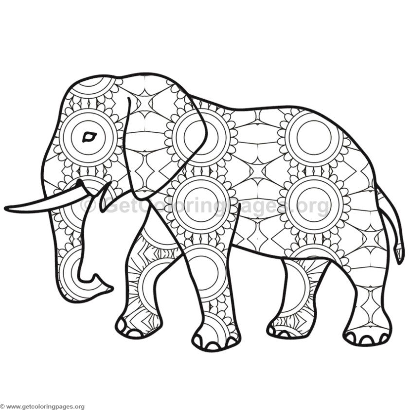 Elephant Coloring Pages 5 GetColoringPages