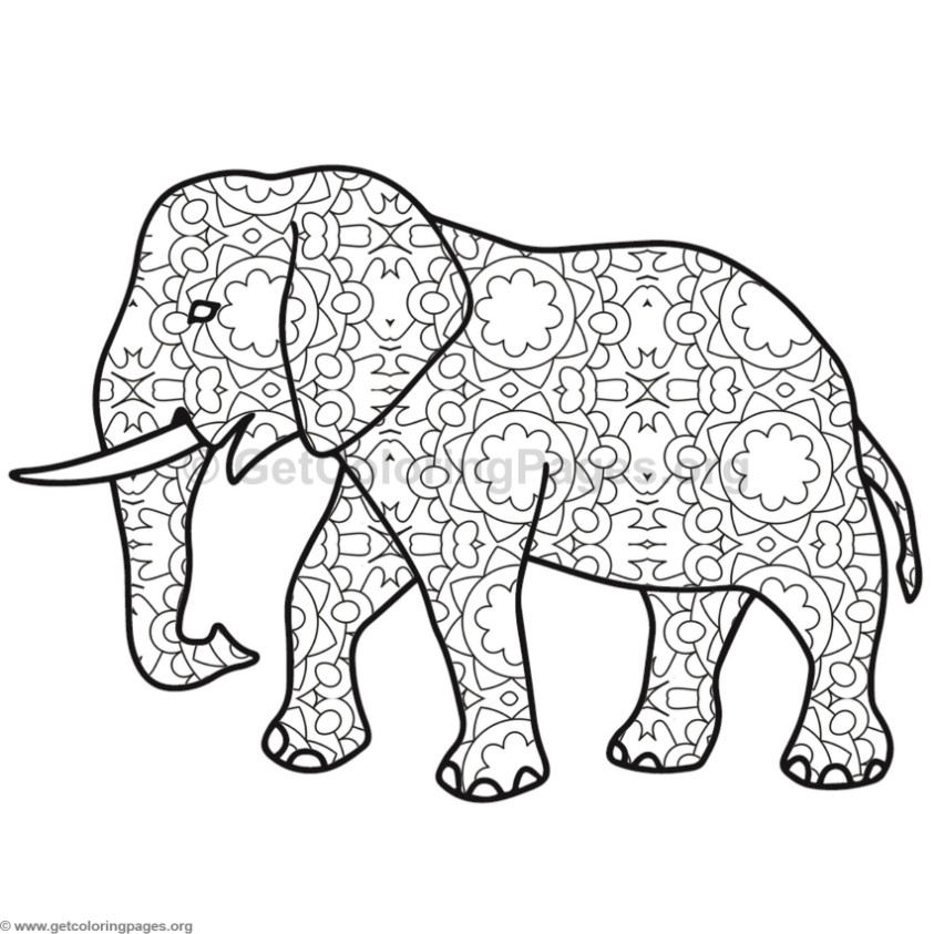 Elephant Coloring Pages #7 – GetColoringPages.org