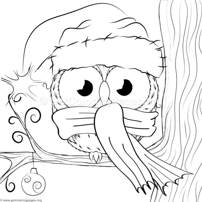 Cute Christmas Owl 1 Coloring Pages