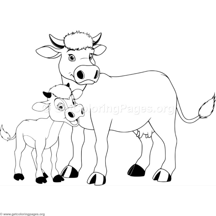 Mother Cow And Calf Coloring Pages
