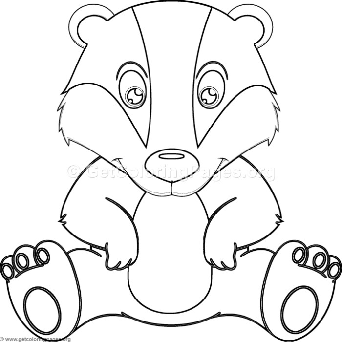 Cute Little Badger Coloring Pages