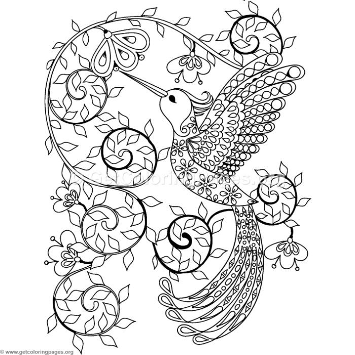 Zentangle hummingbird coloring pages for Coloring pages of hummingbirds