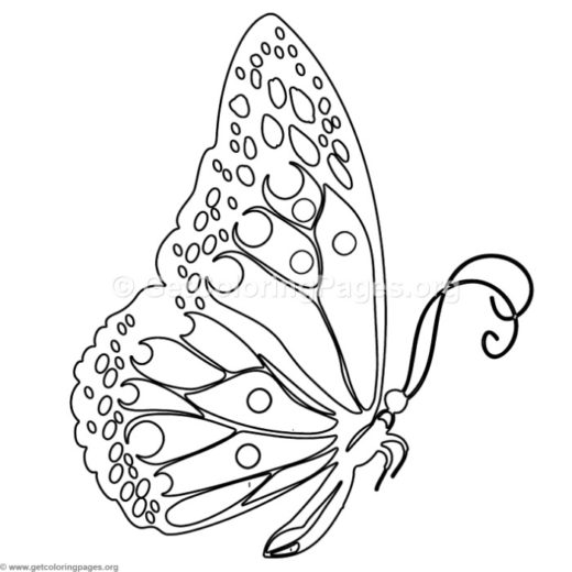 Butterfly 3 Coloring Pages