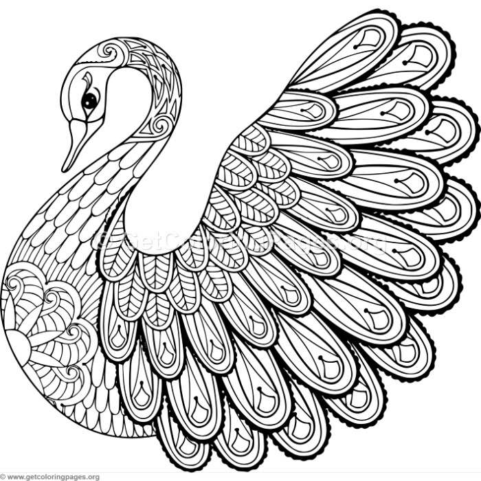 Zentangle swan coloring pages