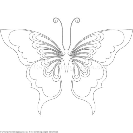 Butterfly 12 Coloring Pages