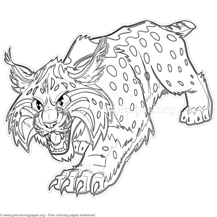 Cartoon Bobcat Or Wildcat Coloring Pages Getcoloringpages Org