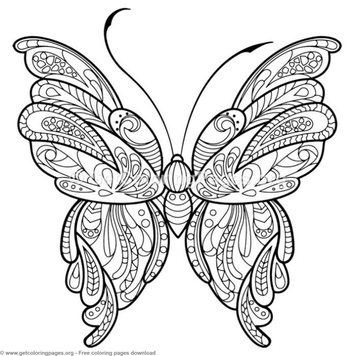 2 Zentangle Patterns Butterfly Coloring Pages ...