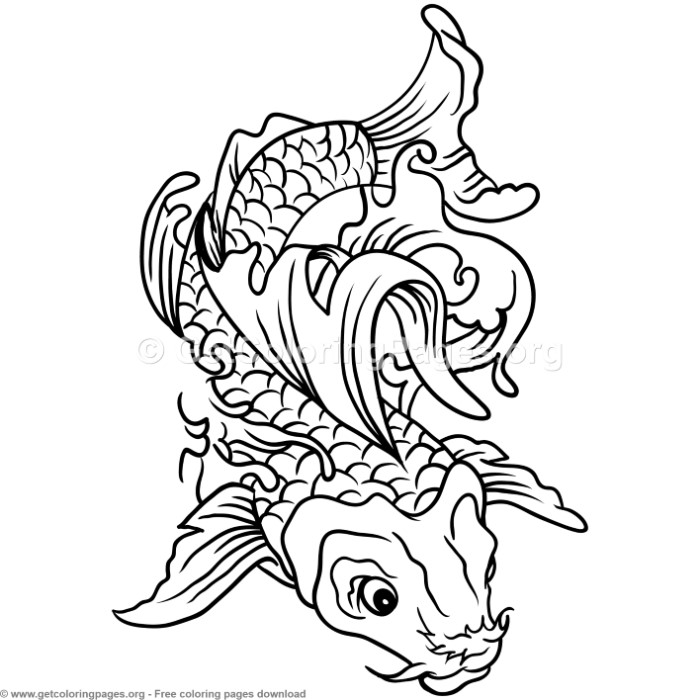 6 Koi Fish Coloring Pages GetColoringPages