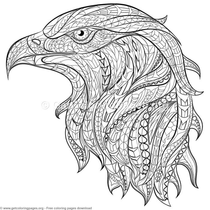patterned zentangle eagle coloring pages