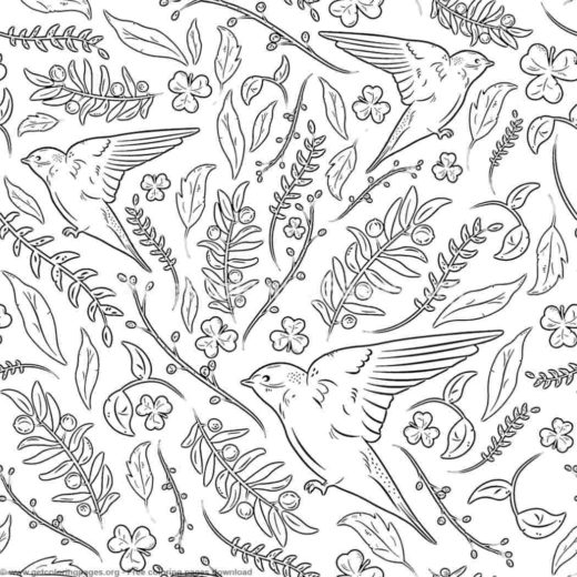 Birds Colouring Book Getcoloringpages Org