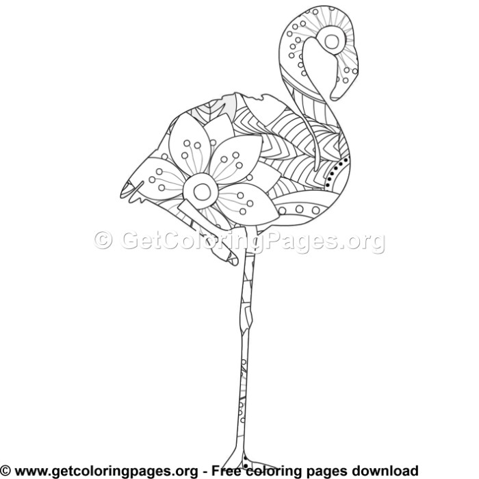 1 Zentangle Flamingo Bird Coloring Pages